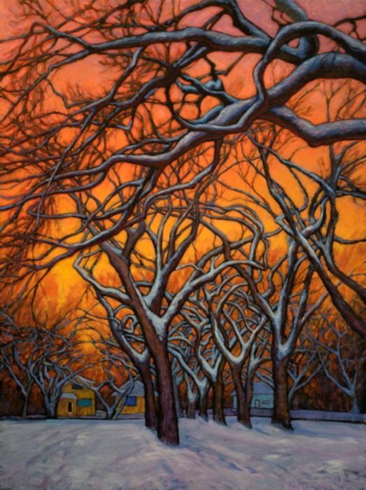 Sunset Elms, Oil Painting by Ann McLaughlin