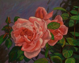 Roses, Oil Painting by Ann McLaughlin