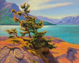 Abraham Lake Pine, Oil Painting by Ann McLaughlin