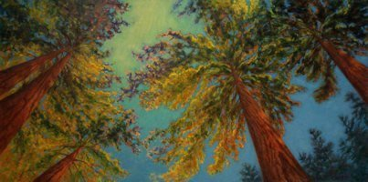 Cathedral Grove, Oil Painting by Ann McLaughlin
