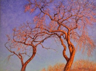 Italian Center Trees, Oil Painting by Ann McLaughlin