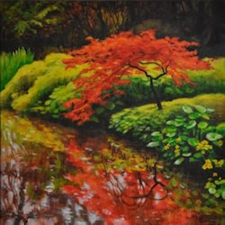 Red Japanese Maple, Oil Painting by Ann McLaughlin