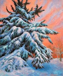 Spruce at Sundown, Oil Painting by Ann McLaughlin