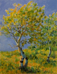 Windy Poplars, Oil Painting by Ann McLaughlin